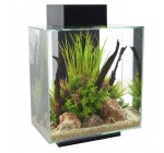 Fluval Edge Aquarium 46L Black Gloss Reviews