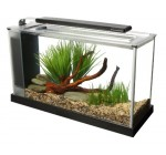 Fluval Spec Aquarium 19L Black