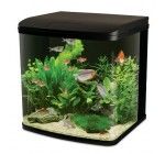 Interpet LED Lighting River Reef Glass Aquarium, 94 Litre Reviews