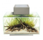 Fluval Edge Pewter Gloss 23l Led Aquarium