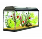 Interpet Aquaverse Glass Aquarium, 110 Litre