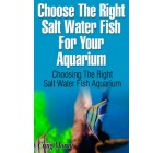 Tips On Choosing The Right Salt Water Fish For Your Aquarium And You – Choosing The Right Aquarium For Your Fish.