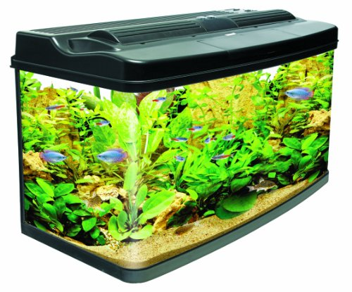 Interpet Fish Pod, 120 Litre