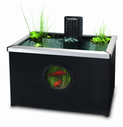 Blagdon Affinity Rectangle Pool – Black