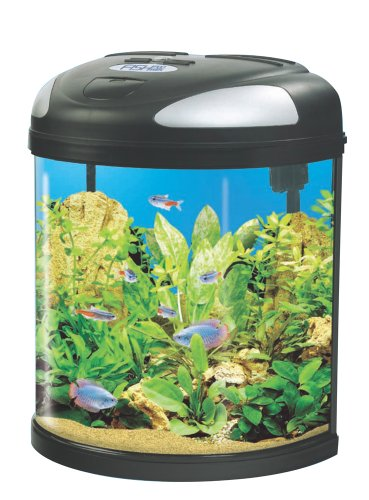 Interpet Fish Pod Moon Glass Aquarium – Fish Pod Moon 19 Litre