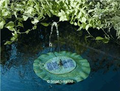 New Floating Lily Solar Fountain Reviews