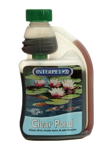 Blagdon Large Clear Pond for Ponds