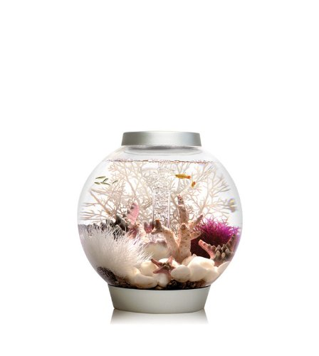 biOrb Baby Aquarium, 15 Litre, 30 x 32 cm, Silver, LED light