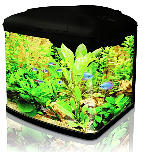 Interpet Fish Pod Glass Aquarium including Cartridge Filter System 48 litre