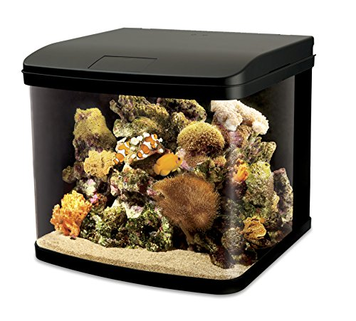 Interpet LED Lighting River Reef Glass Aquarium, 48 Litre Reviews