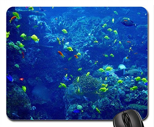 Aquarium full of Fish Mouse Pad, Mousepad (Fish Mouse Pad)