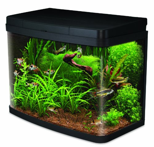 Interpet Insight Glass Aquarium Premium Kit, 40 Litre