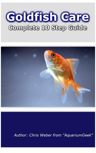 Goldfish Care in 10 Easy Steps