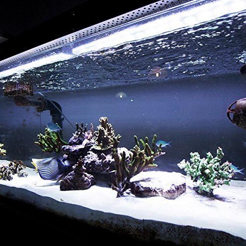 White Aquarium LED Strip Light Set, 100cm, Fully Waterproof / Submersible, 60 Super Bright LED Chips (Fantastic for Fish Tanks, Aquariums, Water Features, Gardens, Etc)