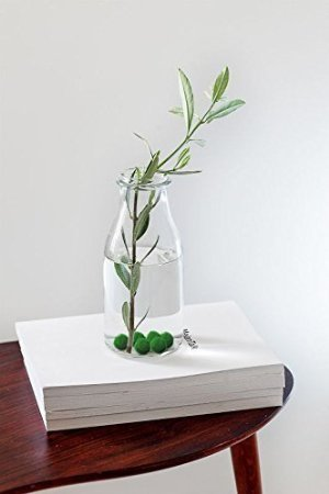 MarimoMossBall x5 + 1 FREE! RARE live plants! Just place them into any bottle and add water. Water change every 2 weeks! Beautiful HousePlant Office Supply Station Desk Accessory Idea Shelf Decor