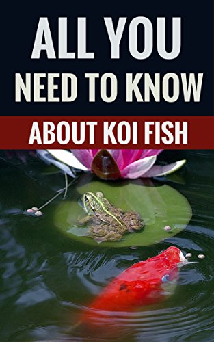 All You Need To Know About Koi Fish – Essential Tips For Koi Owners