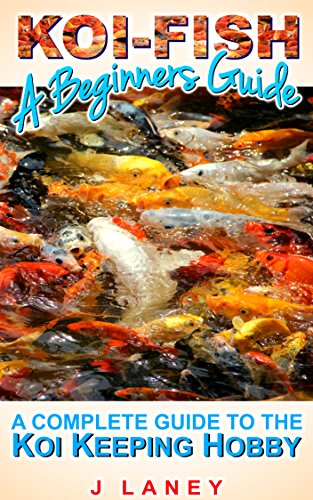 Koi Fish for Beginners: A Complete Guide to Koi Keeping
