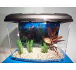 Starter Aquarium Small Fish Tank Complete With Filter,Gravel & Decor Pack