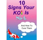 10 Signs Your Koi Is Sick