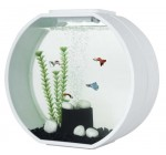 Fish R Fun Deco O Fish Tank White 20L