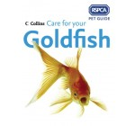 RSPCA Pet Guide – Care for your Goldfish