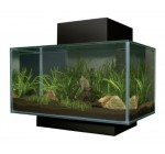Fluval Edge 23L Aquarium – Black