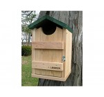 Songbird Essentials SE519 Screech Owl House